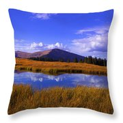 High Country Pond Throw Pillow