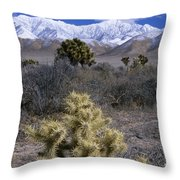High Desert Country Throw Pillow