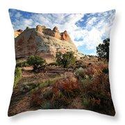 High Desert Paint Throw Pillow