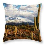 High Desert Snow Throw Pillow