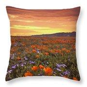 High Desert Sunset Serenade Throw Pillow