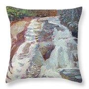 High Falls Dupont Forest Throw Pillow