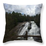 High Falls Dupont State Forest Throw Pillow