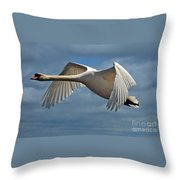 High Flying Throw Pillow