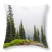 High Forest On Mt. Rainier Throw Pillow