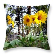 High In The Hills Throw Pillow