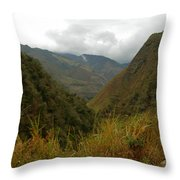 High In The Mountains Of The Intag Throw Pillow