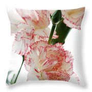 High Key Pink And White Carnation Floral  Throw Pillow