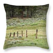 High Meadow Throw Pillow