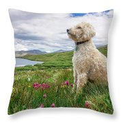 High Meadow With Eyes To The Sky Throw Pillow
