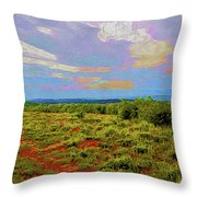 High Mesa Path Throw Pillow