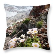High Mountain Flowers Throw Pillow