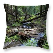 High On Mt. Spokane Throw Pillow