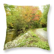 High Road Or Low Road. Throw Pillow
