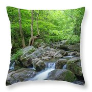 High Shoals Falls Trail In South Mountain Panorama Throw Pillow by Ranjay Mitra