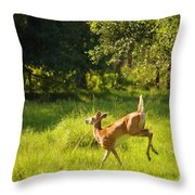 High Tailing It Throw Pillow