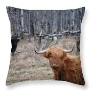 Looking Shaggy Throw Pillow
