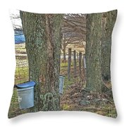 Highland County Va Virginia - Monterey - Mcdowell - Maple Harvest Throw Pillow