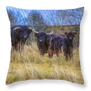 Highland Family Throw Pillow