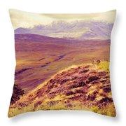 Highland Landscape Throw Pillow