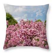 Highland Park Lilacs Detail Rochester Ny Throw Pillow
