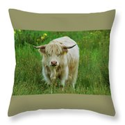 Highland White  Throw Pillow