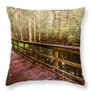 Highlands Hammock Throw Pillow