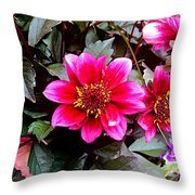 Highlands Ranch Floral Study 1 Throw Pillow