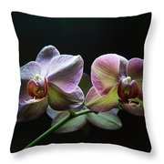 Highlighted Orchids Throw Pillow