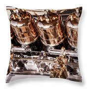 Highly Polished 2 Throw Pillow