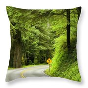 Highway Curve Throw Pillow