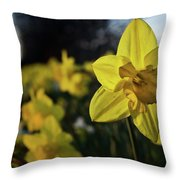 Highway Daffodil Throw Pillow