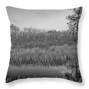 Highwaymens' Muse Throw Pillow