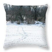 Highways And Byways Throw Pillow