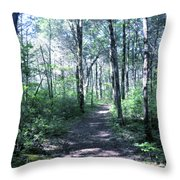 Hike In The Park Throw Pillow
