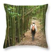 Hiker In Bamboo Forest Throw Pillow