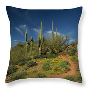 Hiking In Springtime Throw Pillow