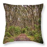 Hiking On Rangitoto New Zealand Throw Pillow