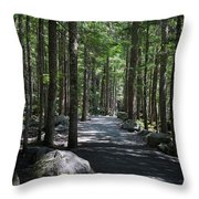 Hiking Trail At Brandywine Falls Provincial Park Throw Pillow