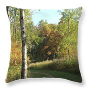 Hiking Trail In Autumn Sunset Throw Pillow