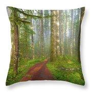 Hiking Trail In Washington State Park Throw Pillow