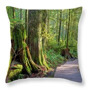 Hiking Trail Through Forest In Lynn Canyon Park Throw Pillow