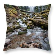 Hiking Zen Forests Throw Pillow