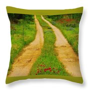 Hill Country Backroad Throw Pillow
