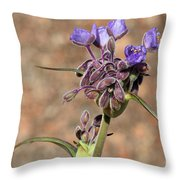Hill Country Flower Throw Pillow