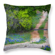 Hill Country Road Throw Pillow