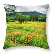 Hill Country Wildflowers Throw Pillow