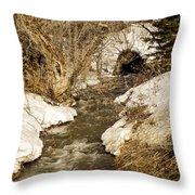 Hill Drain 2 Throw Pillow