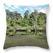 Hillsborough River 1 Throw Pillow