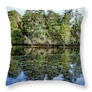Hillsborough River Panorama 1 Throw Pillow